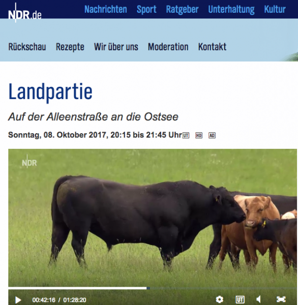 Landpartie