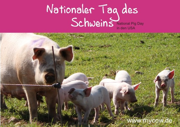 2017_National_Pig_Day_USA-Seite001